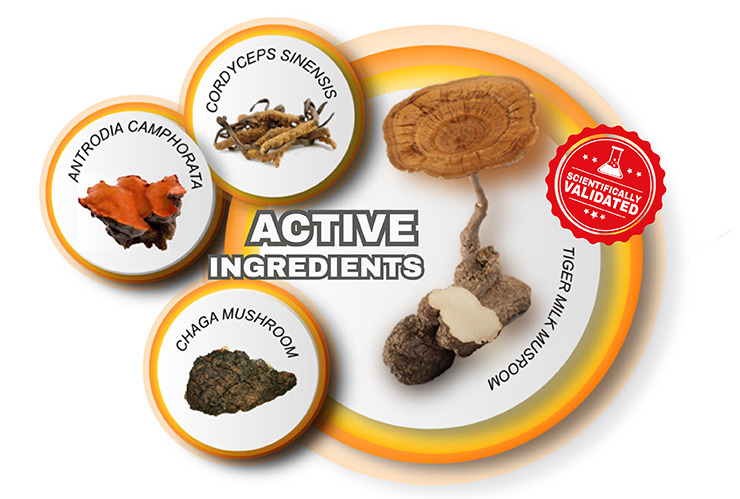 QUALITY PRODUCTS START WITH SCIENTIFICALLY PROVEN ACTIVE INGREDIENTS